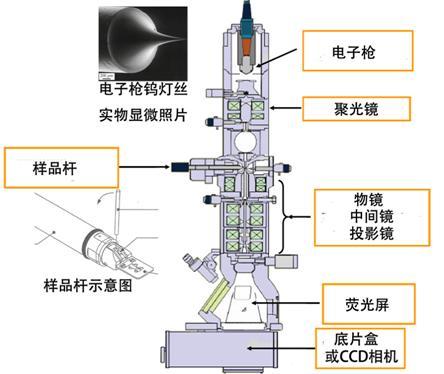 构造电子显微镜的基本举例,风景及v风景透射价格图手绘初中图片