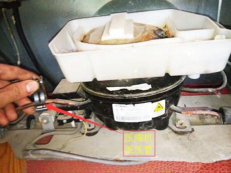 4,将压缩机的接线盒打开,将与压缩机保护器,启动器连接的电线,拔掉.