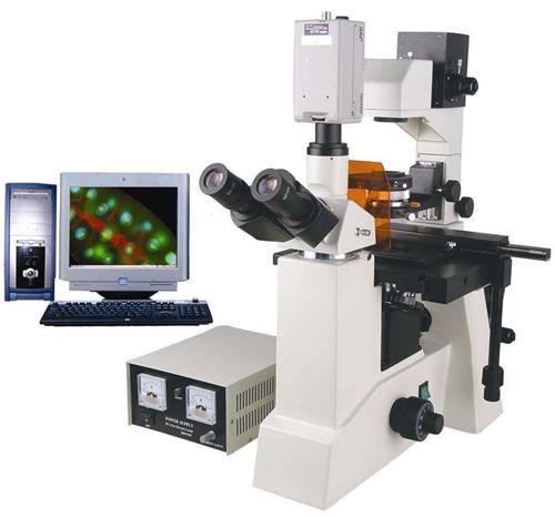 倒置荧光显微镜1.jpg