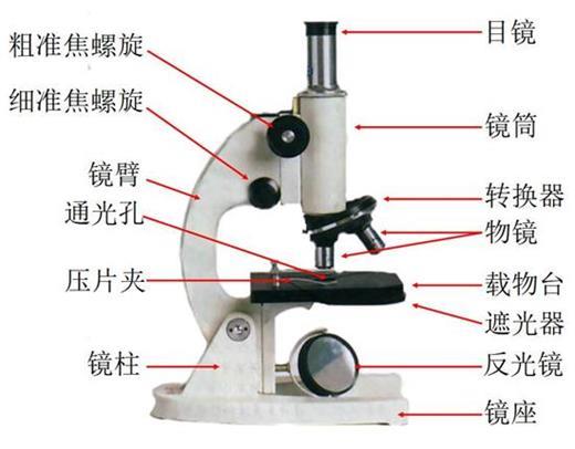 显微镜的结构图   显微镜的放大倍数   显微镜的放大倍数为目镜倍数乘物镜倍数,如目镜为10倍,物镜为40倍,则放大倍数为4010倍(放大400倍)。光学显微镜的极限放大是2000倍,可分辨相距1^10(-5)厘米的两点。   看了以上小编对显微镜的使用方法、结构图及放大倍数讲解之后,显微镜如何使用及它是由哪些部件组成的,大家应该都比较清楚了。显微镜按照成像原理可分为光学显微镜和电子显微镜两大类,每种不同的显微镜构造和作用也都是不同的,大家一定要掌握其知识并正确使用。